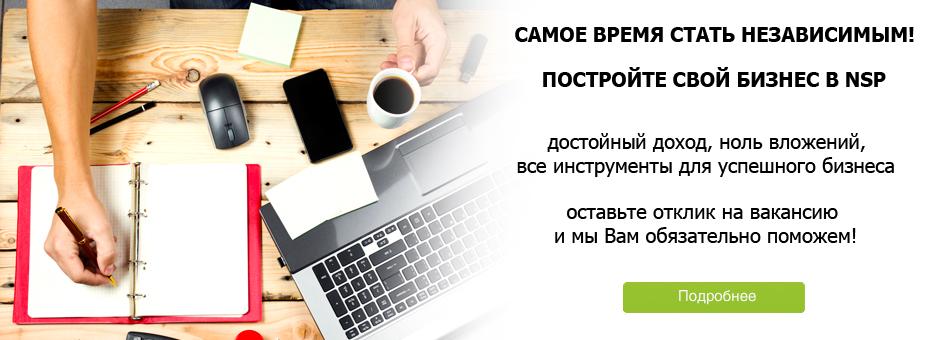 Бизнес вкомпании NSP